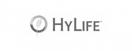 HyLife-gray